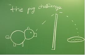 pig_challenge