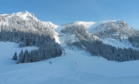 Ski.2015